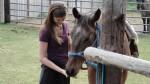 Horsebacking